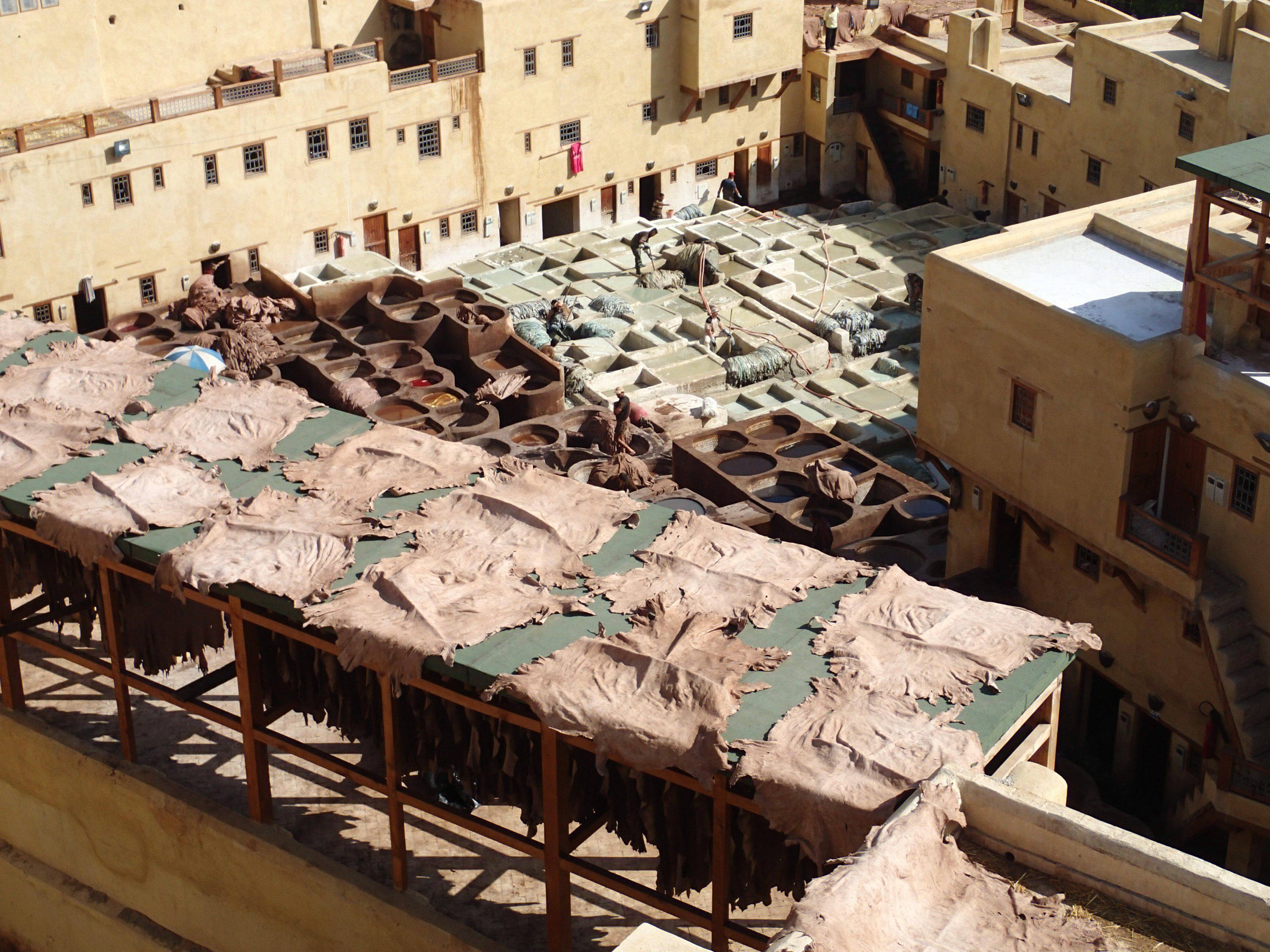 Rabat, Salé en Fes